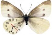 """Часы """"Бабочка белая"""""""