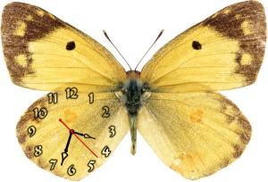 """Часы """"Бабочка желтая"""""""