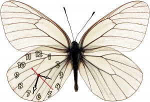 """Часы """"Бабочка Белая-2"""""""