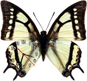 """Часы """"Бабочка черно-белая"""""""
