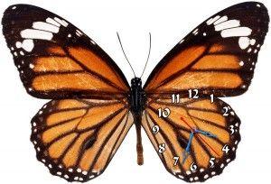 """Часы """"Бабочка оранжево-черная"""""""