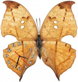 """Часы """"Бабочка рыжая"""""""
