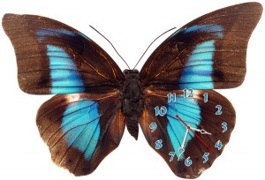 "Часы ""Бабочка черно-голубая"""