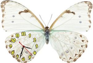 """Часы""""Бабочка белая 3"""""""