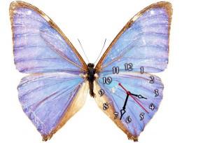 "Часы ""Бабочка нейлоновая"""