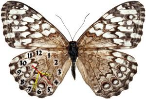 """Часы """"Бабочка пятнистая"""""""