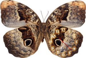 """Часы """"Бабочка необычная"""""""