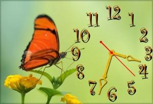 """Часы """"Оранжевая бабочка"""""""