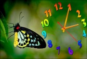 """Часы """"Бабочка 6"""""""