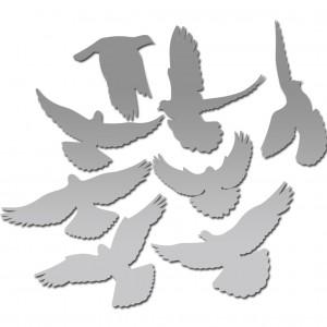 """Зеркало """"Набор птиц"""""""