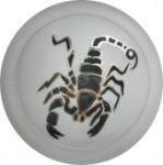 Светильник Скорпион